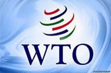 Уже несколько секторов российской экономики ощутили негативные последствия вступления в ВТО