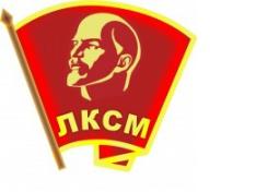 Пленум Саратовского областного комитета ЛКСМ РФ