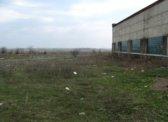 Петровские общественники потребовали от Фадеева перенести гайд-парк с пустыря