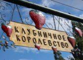 Депутат назвал балаковский фестиваль клубники ширмой, скрывающей реальное положение дел в экономике города