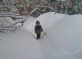 Саратов перед паводком. Запасы воды в снеге вчетверо выше областной нормы