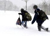 В районах Саратовской области дети не могут добраться до школ