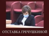 Александр Анидалов об отставке Гречушкиной