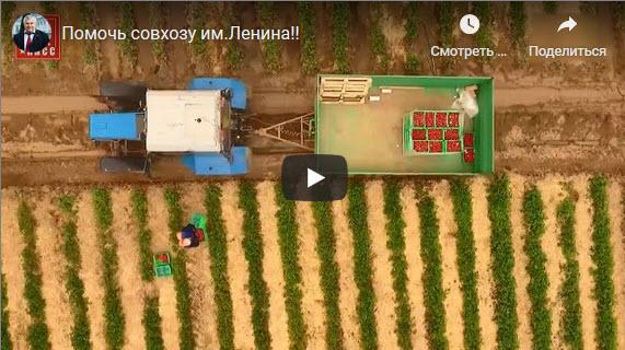 СКП-КПСС: Помочь совхозу имени Ленина!