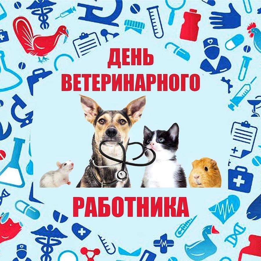 Ольга Алимова поздравила с Днем ветеринарного работника