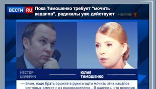 6e81fe_timoshenko