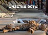 Опрос: число счастливых россиян достигло максимума за четверть века
