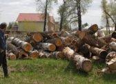 Тинь-Зинь: Почему в год экологии в Саратовской области активно уничтожаются природные парки? КПРФ и Тургенев против.