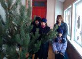 Балашов. Депутаты-коммунисты подарили детям НОВОГОДНЮЮ ЕЛКУ