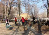 Саратовские коммунисты вышли на субботник вместе с жителями Ленинского района