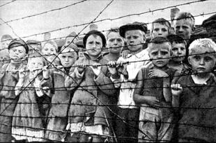 «Единая Россия» заблокировала в Госдуме все законопроекты в защиту ветеранов, переживших Отечественную войну