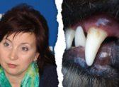 Саратовчанка рассказала о нападении на нее бойцовской собаки депутата-единоросса