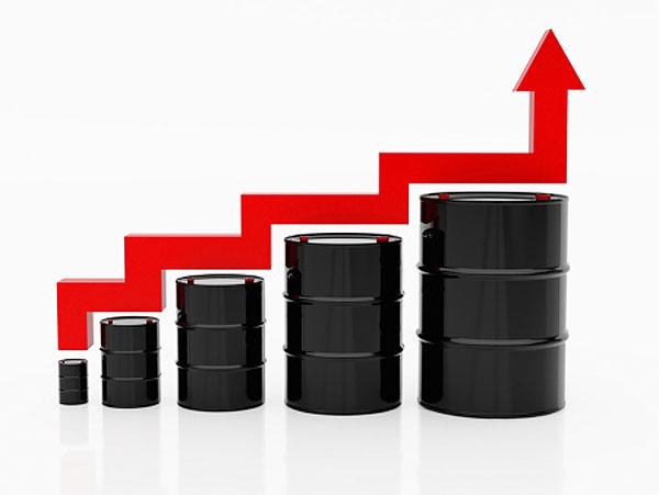 В.Ф. Рашкин: Цена на дизельное топливо значительно превышает его себестоимость