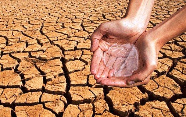 Ольга Алимова: На берегу Волги… и без воды