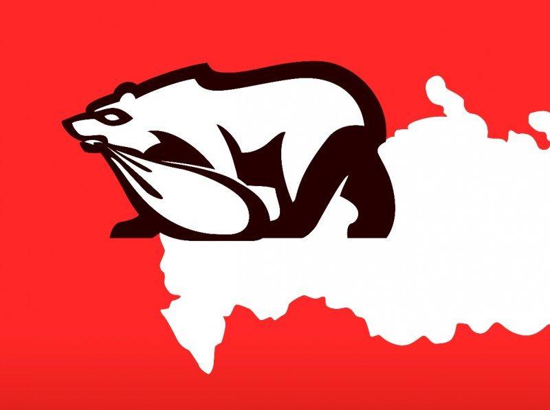 На успех на выборах, господа «медведи», не рассчитывайте! Ваши манипуляции не пройдут!