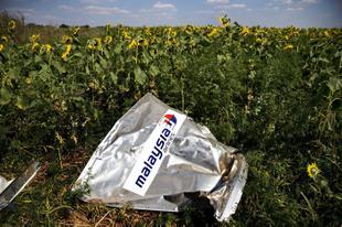 Правда и мифы вокруг гибели «Боинга». Кому выгодна катастрофа малайзийского авиалайнера