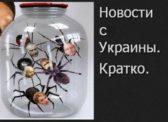 «Пауки в банке». Газета «Правда» про выборы на Украине