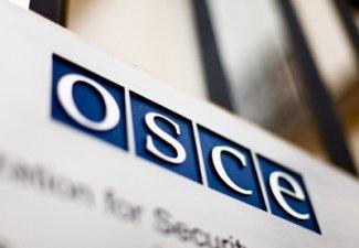 Ольга Алимова о ходе Парламентской ассамблеи ОБСЕ: Необходимо провести расследование того, что уже произошло на Украине и происходит сейчас.